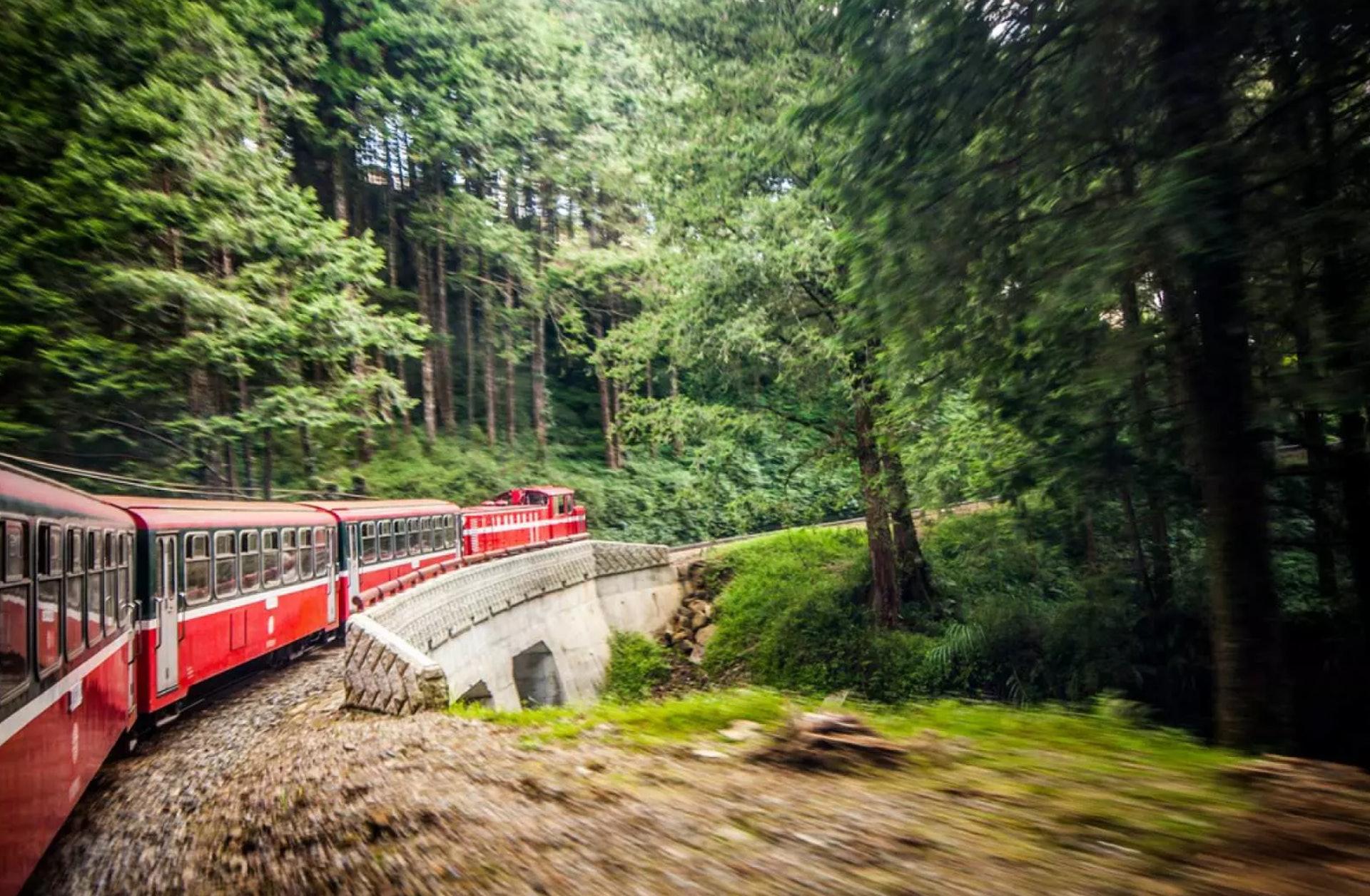 阿里山小火車 (KKday截圖)